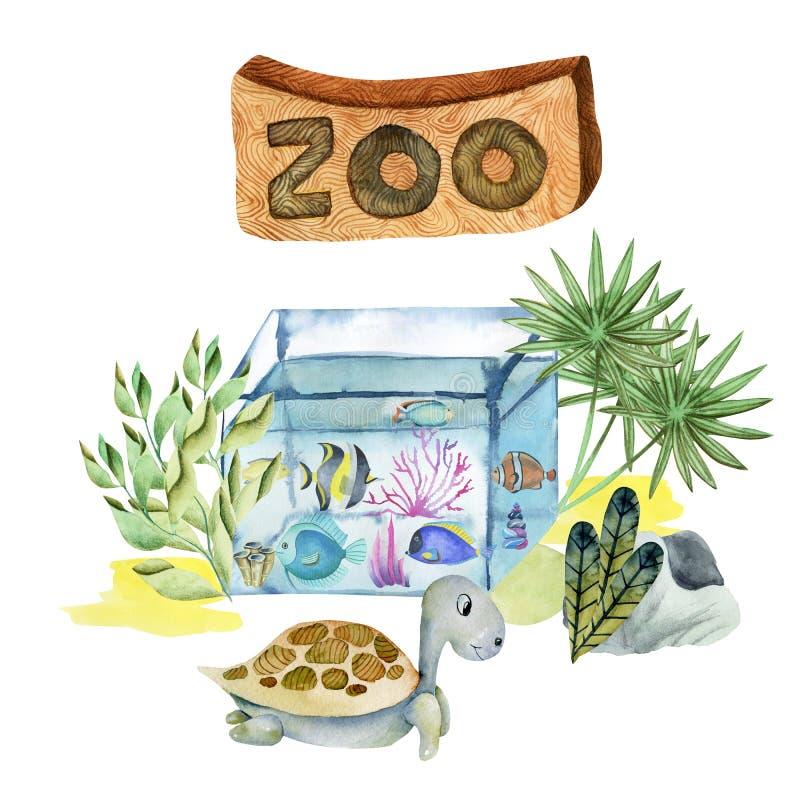 Ejemplo de la acuarela del acuario y de la tortuga en el parque zoológico