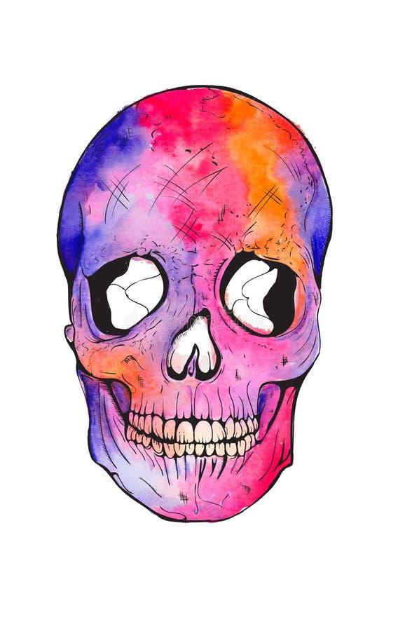Ejemplo de la acuarela del cráneo stock de ilustración