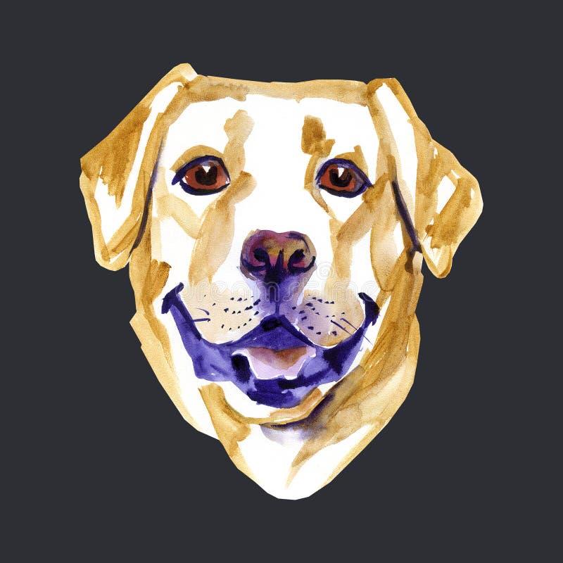 Ejemplo de la acuarela del labrador retriever de la raza del perro amarillo stock de ilustración