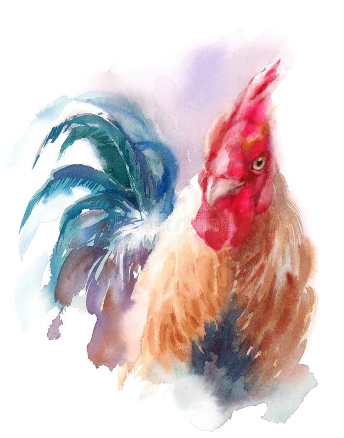 Ejemplo de la acuarela del pájaro de la granja del gallo pintado a mano stock de ilustración
