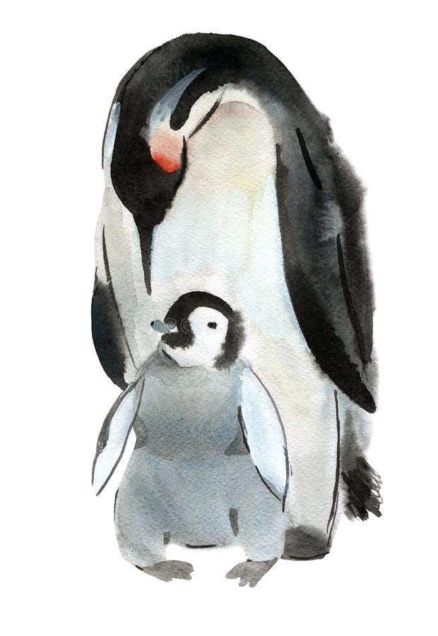Ejemplo de la acuarela del pingüino y del bebé del pájaro en el fondo blanco stock de ilustración