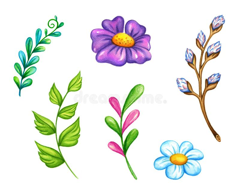 Ejemplo de la acuarela de las flores y de las hojas de la primavera libre illustration