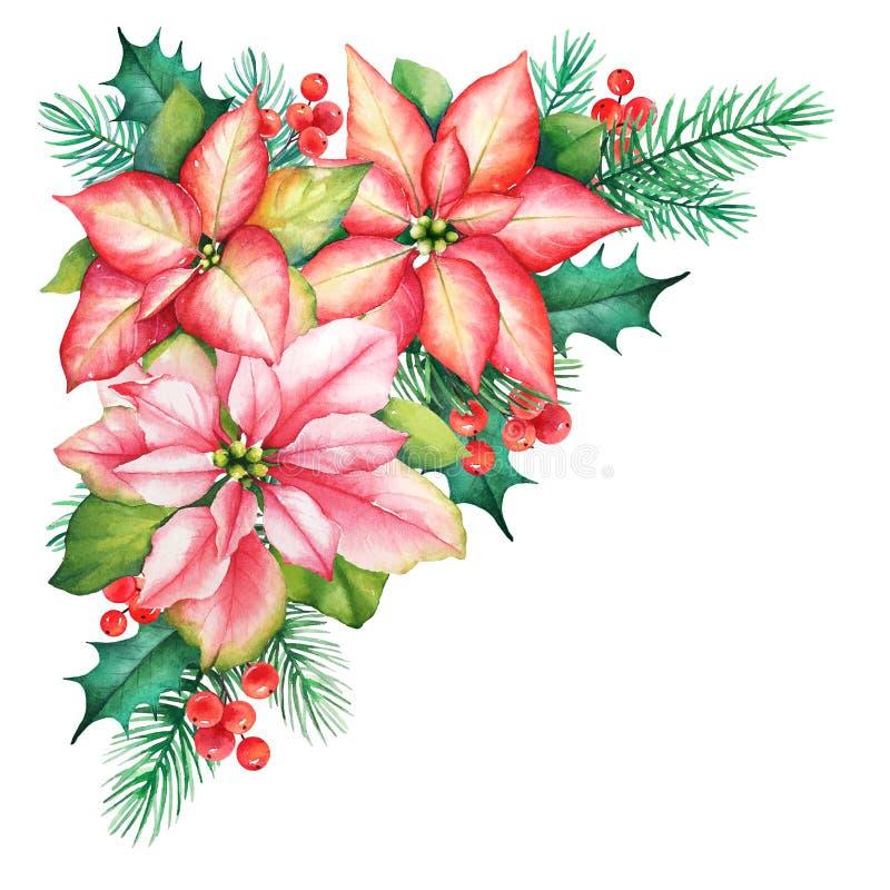 Ejemplo de la acuarela de un bouqet de la Navidad con la poinsetia la Florida stock de ilustración