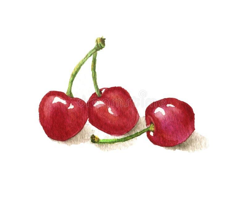 Ejemplo de la acuarela de una cereza libre illustration