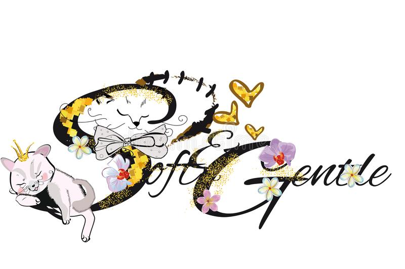 Ejemplo de la camiseta del vector del lema con el gato mullido stock de ilustración
