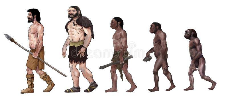 Ejemplo de la evolución humana foto de archivo