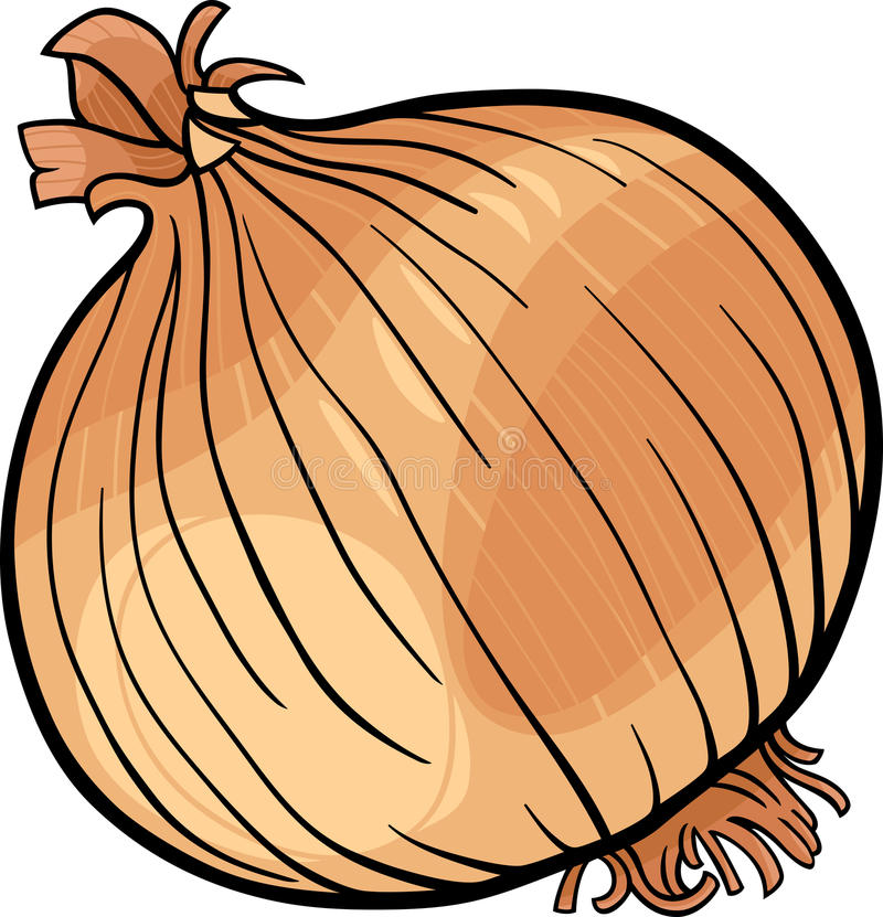 Ejemplo vegetal de la historieta de la cebolla stock de ilustración
