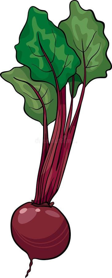 Ejemplo vegetal de la historieta de la remolacha stock de ilustración