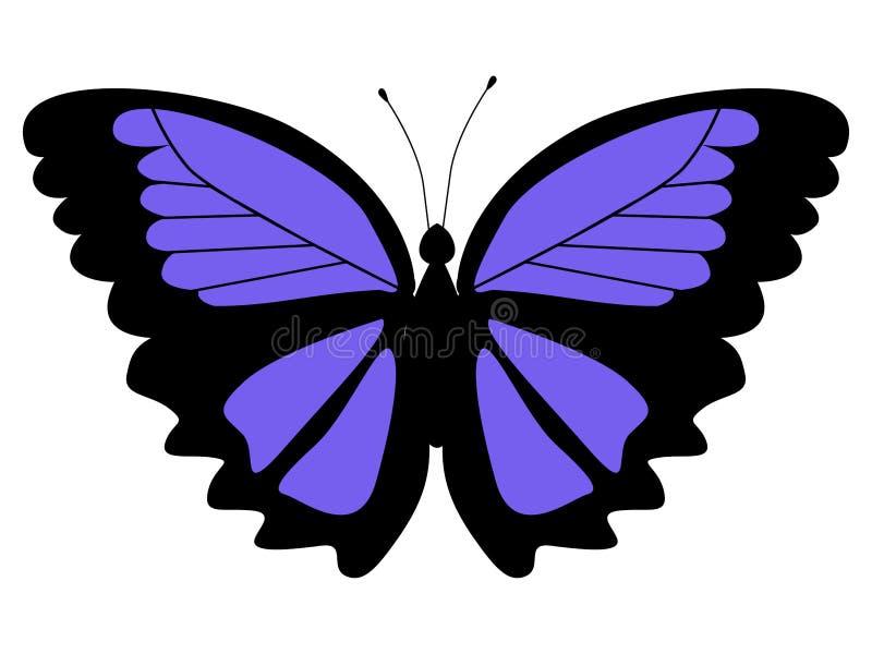 Ejemplo de la mariposa del morpho libre illustration