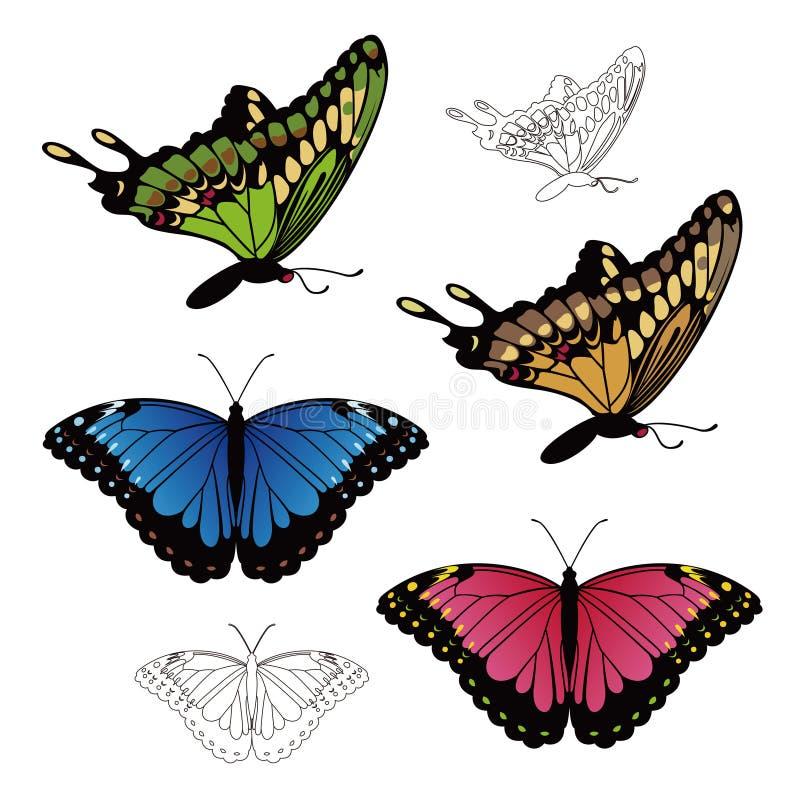 Ejemplo de la mariposa realista de Swallowtail y de Morpho libre illustration