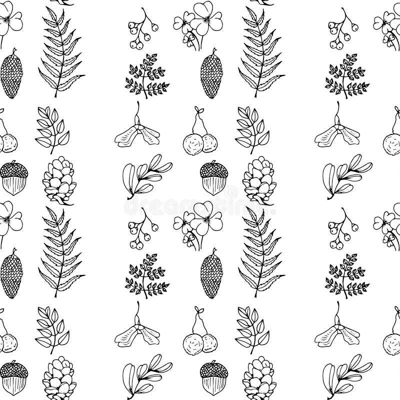Ejemplo de la naturaleza Materiales naturales Postal del bosque Frutas del bosque, hojas, ramas Modelo inconsútil blanco y negro libre illustration