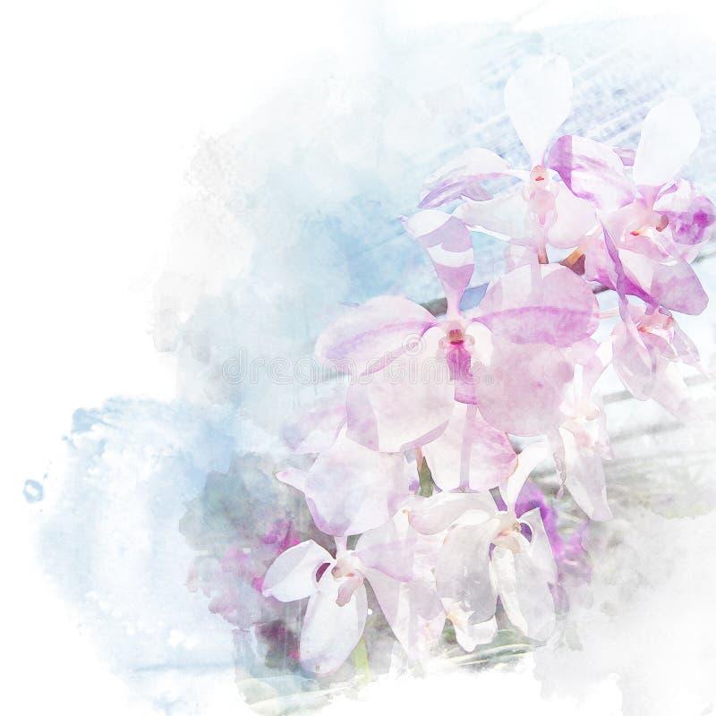 Ejemplo de la orquídea hermosa del flor ilustración del vector