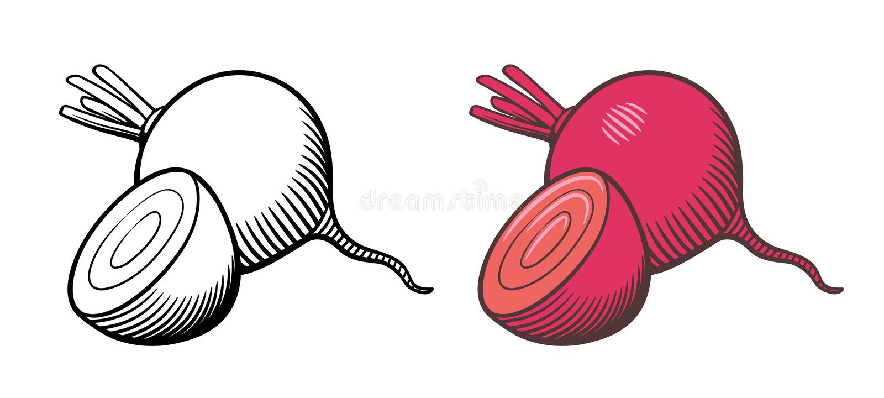 Ejemplo de las remolachas stock de ilustración