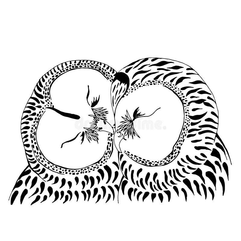 Ejemplo de los pares del búho libre illustration