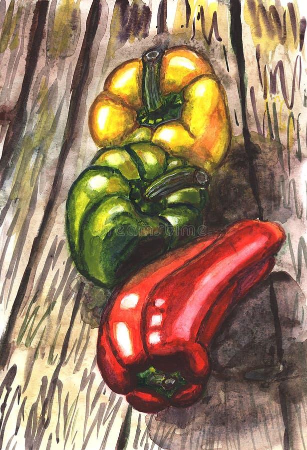 Ejemplo de madera amarillo verde rojo de la acuarela de la tabla del otoño de las verduras de las pimientas ilustración del vector