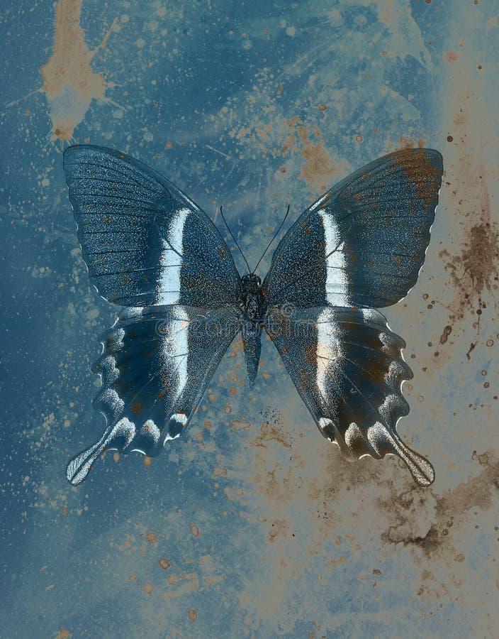 Ejemplo de una mariposa del color, medio mezclado, fondo de la estructura stock de ilustración
