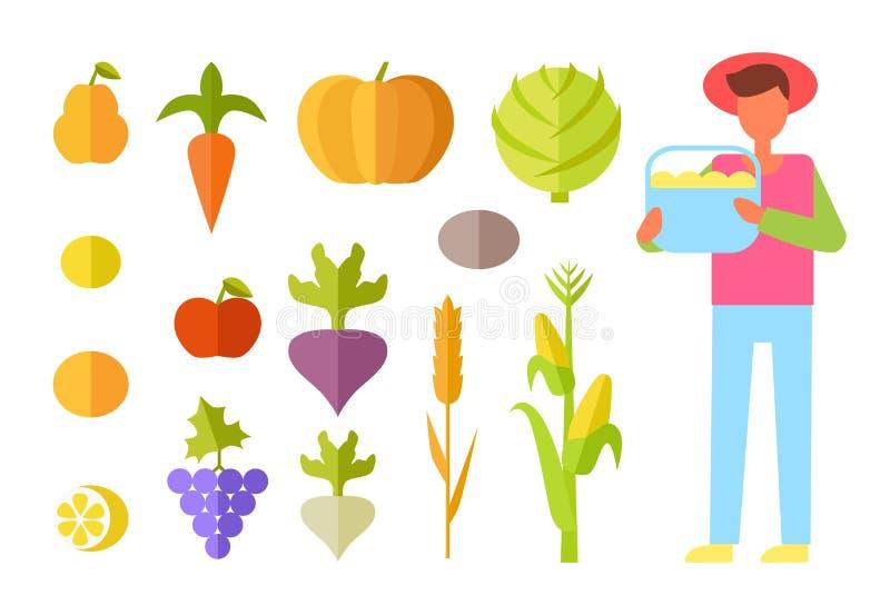 Ejemplo de Vegetables Set Vector del granjero de la cosecha ilustración del vector