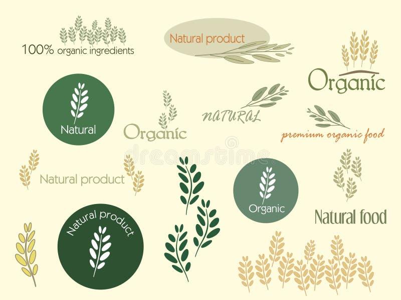 Ejemplo del alimento biológico, vector ilustración del vector
