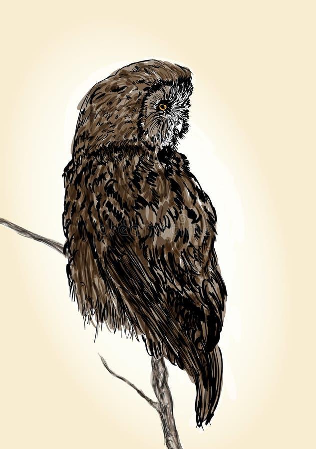 Ejemplo del búho stock de ilustración