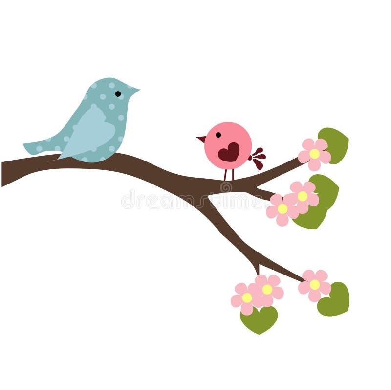 Ejemplo del bebé de la primavera de los pájaros de los pares en la rama libre illustration