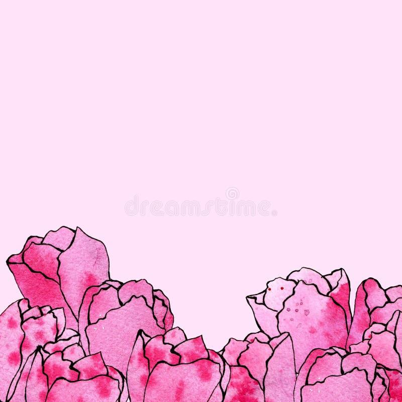 Ejemplo del bosquejo de la acuarela de tulipanes rosados en un fondo rosado dispuesto en el lado inferior ilustración del vector
