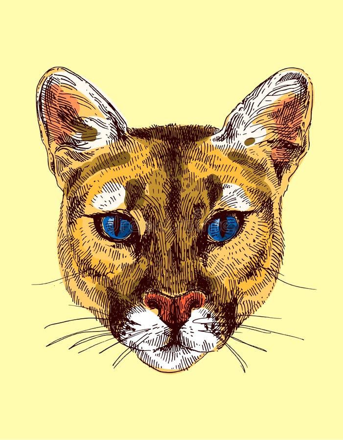 Ejemplo del bosquejo del puma libre illustration