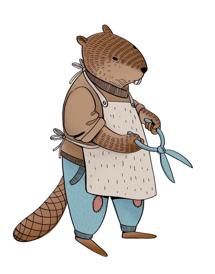 Ejemplo del castor como humano en los vaqueros, el suéter y el delantal sosteniendo las tijeras libre illustration