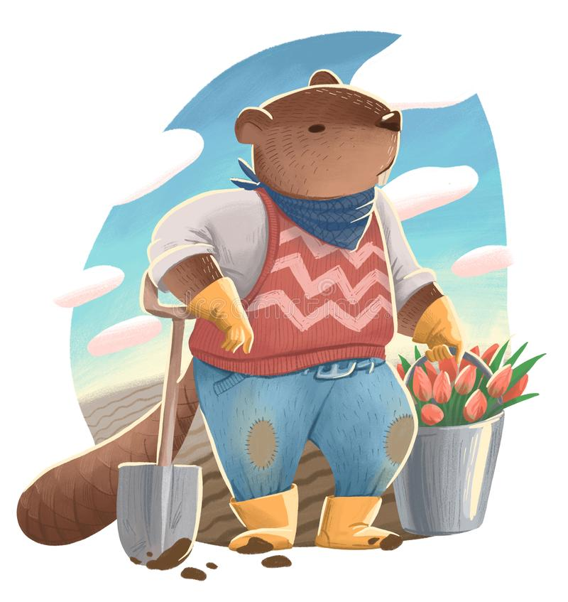 Ejemplo del castor como humano en los vaqueros y el suéter que sostienen una pala y un cubo con las flores del tulipán libre illustration