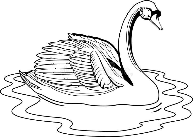 Ejemplo del cisne mudo stock de ilustración