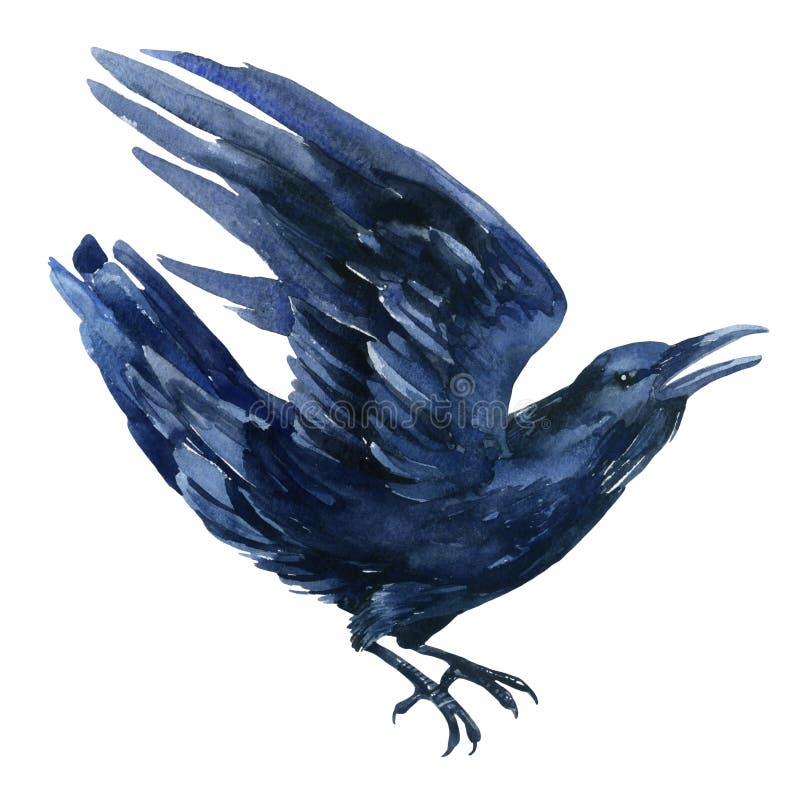 Ejemplo del cuervo libre illustration