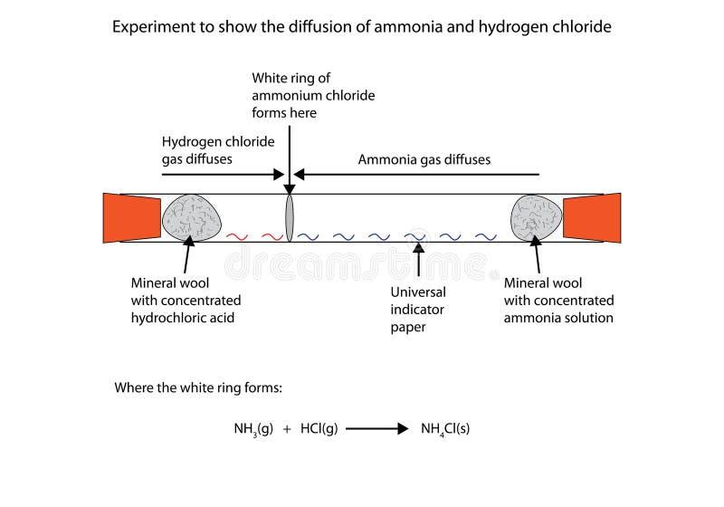 Ejemplo del diffussion del cloruro del amoníaco y de hidrógeno ilustración del vector