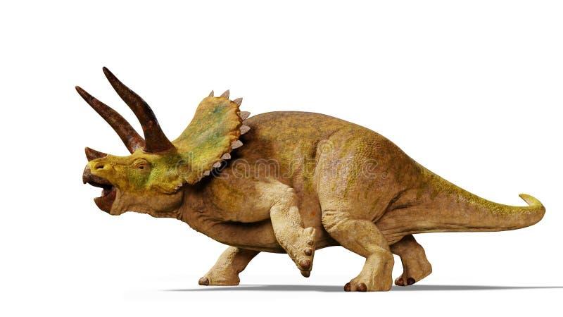 Ejemplo del dinosaurio 3d del horridus del Triceratops aislado con la sombra en el fondo blanco ilustración del vector