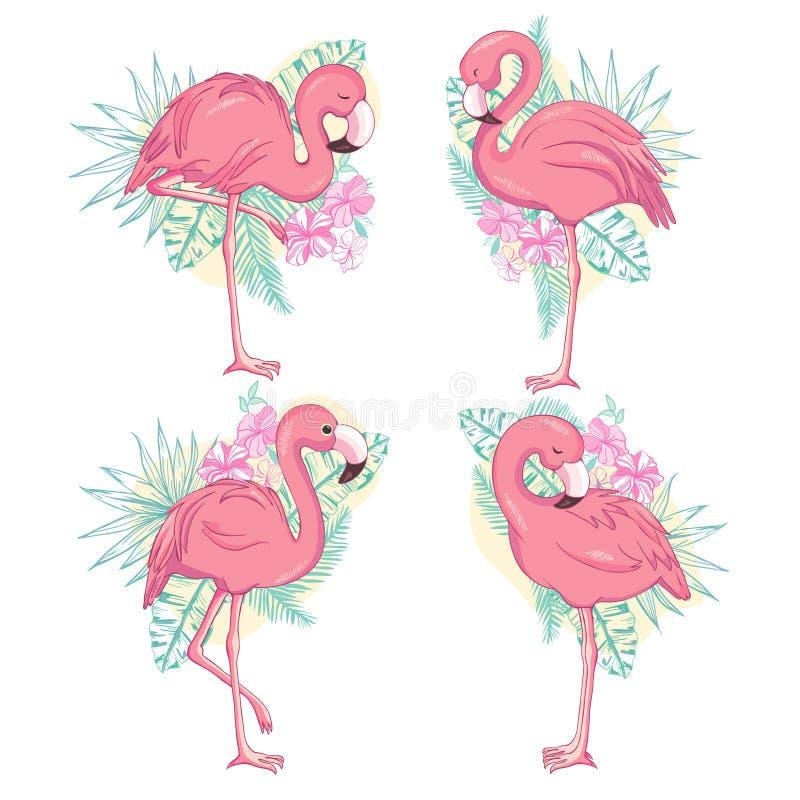 Ejemplo del flamenco, vector del sistema del flamenco libre illustration
