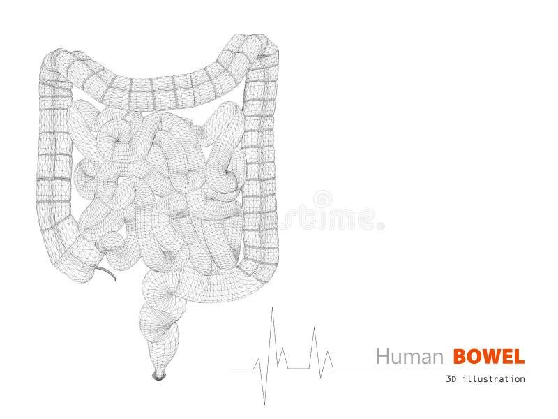 Ejemplo del fondo científico del extracto de los intestinos libre illustration