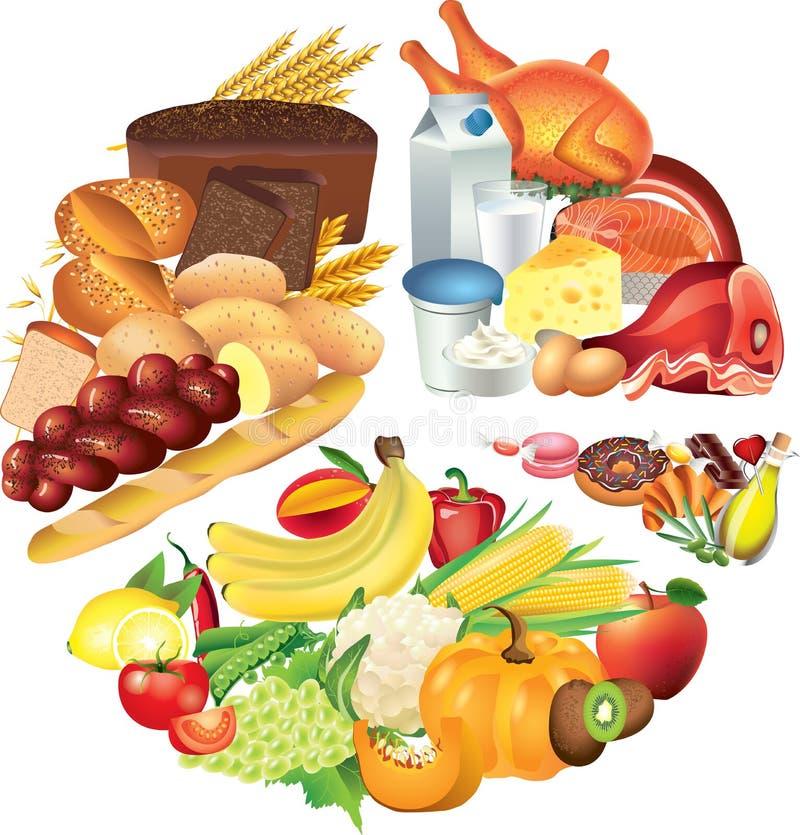 Ejemplo del gráfico de sectores de la comida ilustración del vector