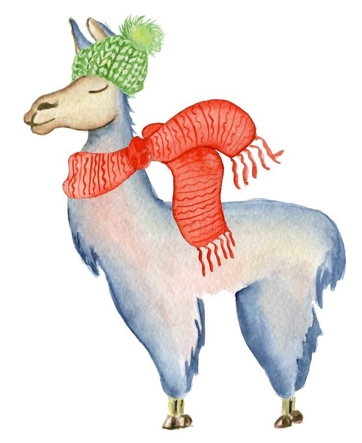 Ejemplo del lama de la Navidad con el ejemplo lindo de los niños de los animales de la acuarela del invierno del sombrero y de la stock de ilustración