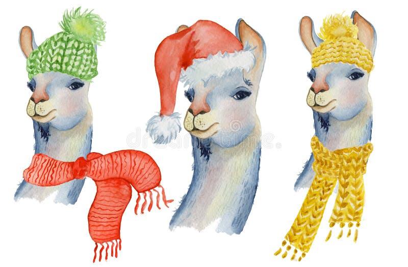 Ejemplo del lama de la Navidad con el ejemplo lindo de los niños de los animales de la acuarela del invierno del sombrero y de la ilustración del vector