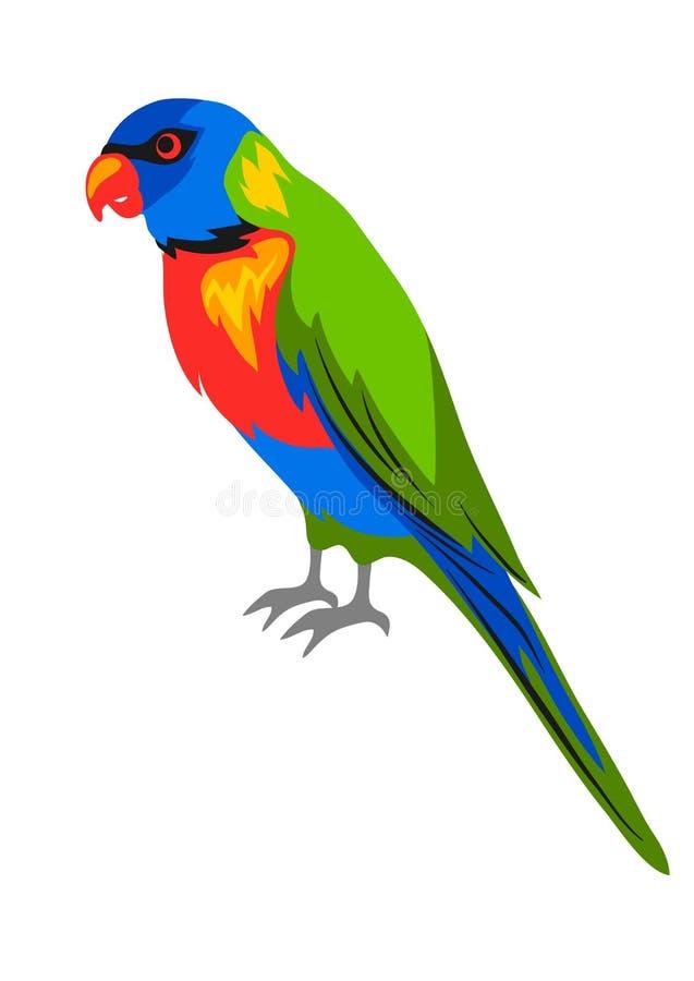 Ejemplo del lorikeet del arco iris Pájaro exótico tropical en el fondo blanco stock de ilustración