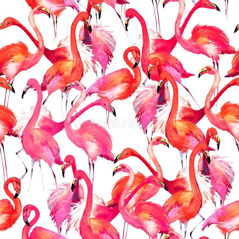Ejemplo del pájaro del flamenco de la acuarela libre illustration