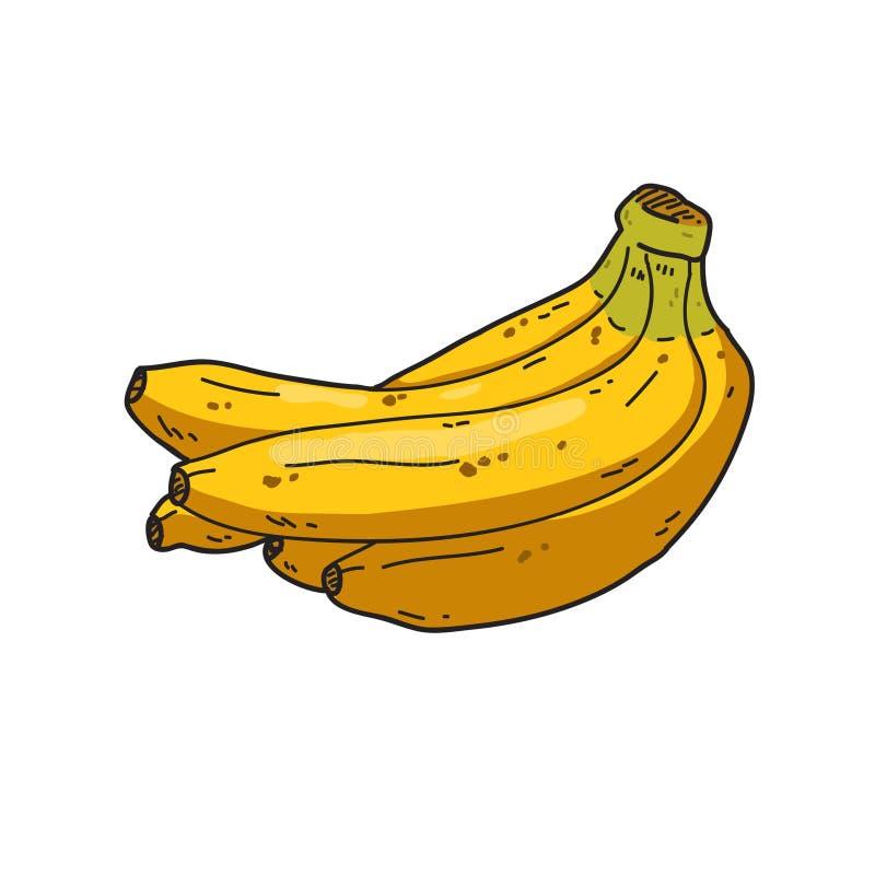 Ejemplo del plátano con los detalles foto de archivo