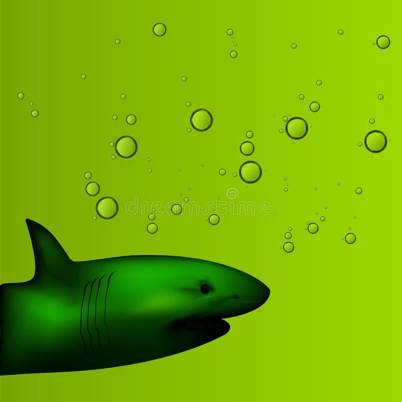 Ejemplo del tiburón en fondo del agua con las burbujas en el fondo verde imágenes de archivo libres de regalías