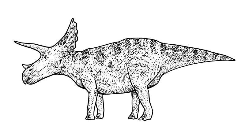 Ejemplo del Triceratops, dibujo, grabado, tinta, línea arte, vector stock de ilustración