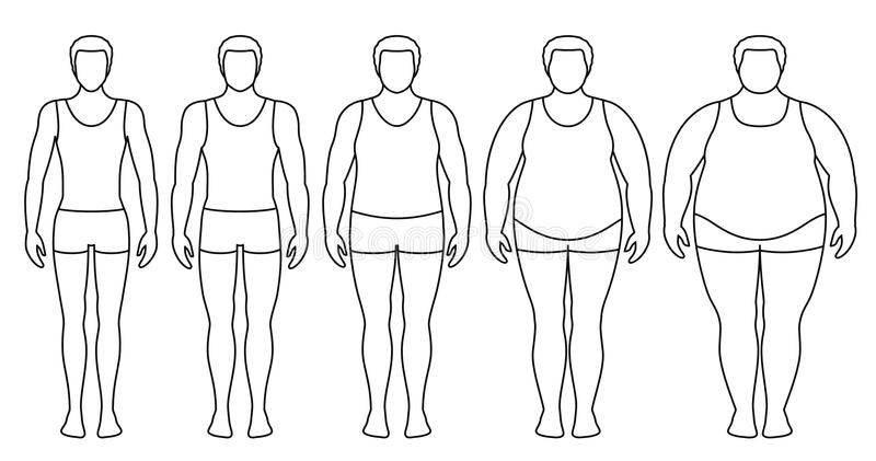 Ejemplo del vector del índice de masa corporal del peso insuficiente a extremadamente obeso libre illustration