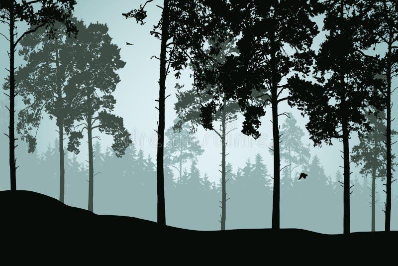 Ejemplo del vector del bosque del pino con los pájaros stock de ilustración