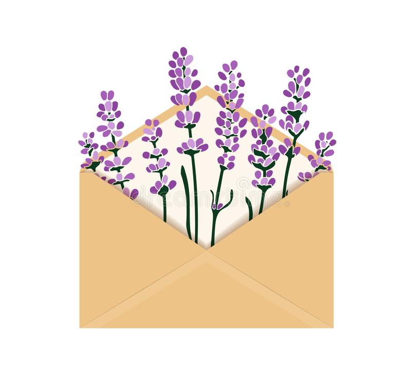 Ejemplo del vector con lavanda en sobre fotografía de archivo libre de regalías