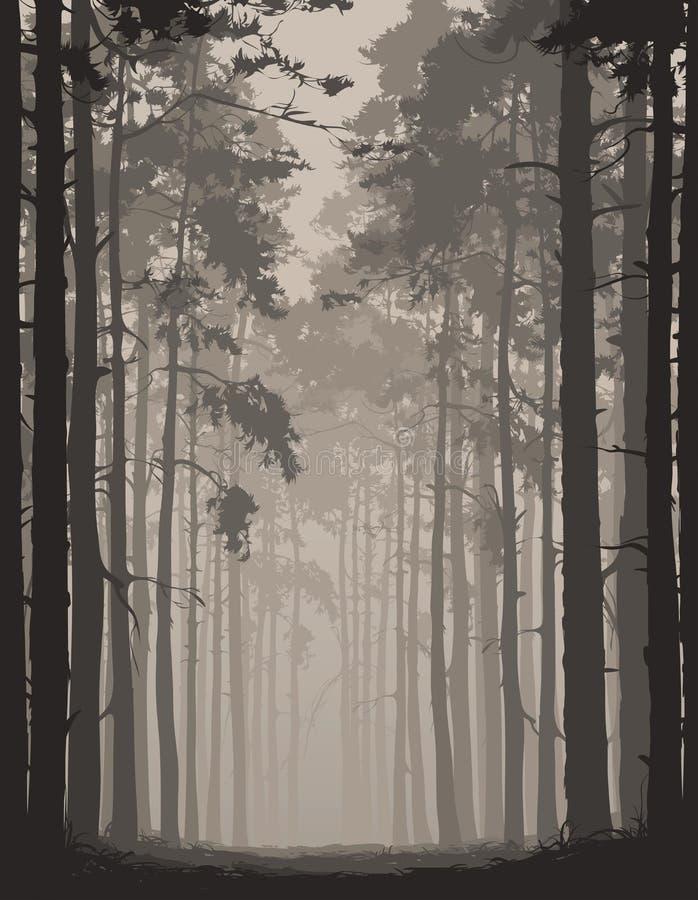 Ejemplo del vector con un bosque del pino ilustración del vector