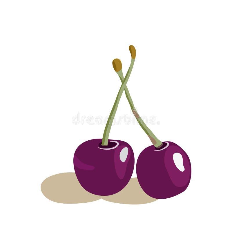 Ejemplo del vector de cerezas apetitosas stock de ilustración