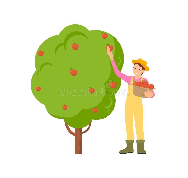 Ejemplo del vector de Harvesting Season Icon del granjero ilustración del vector