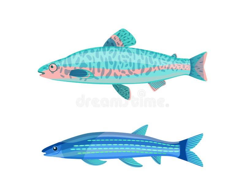 Ejemplo del vector de Jack Dempsey Fish y de la caballa libre illustration