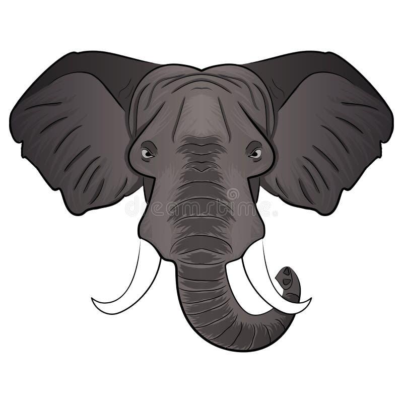 Ejemplo del vector de la cabeza de la historieta del elefante stock de ilustración